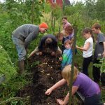 Farm Experience Day Camp